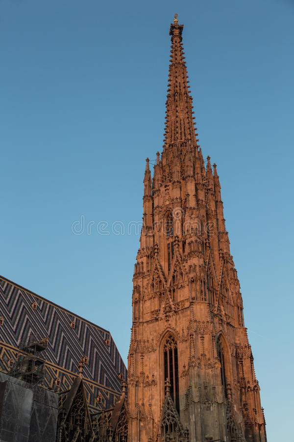 Helgon Stephens Cathedral Vienna arkivfoton