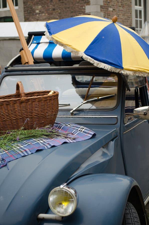 Helgpicknick med bilen fotografering för bildbyråer