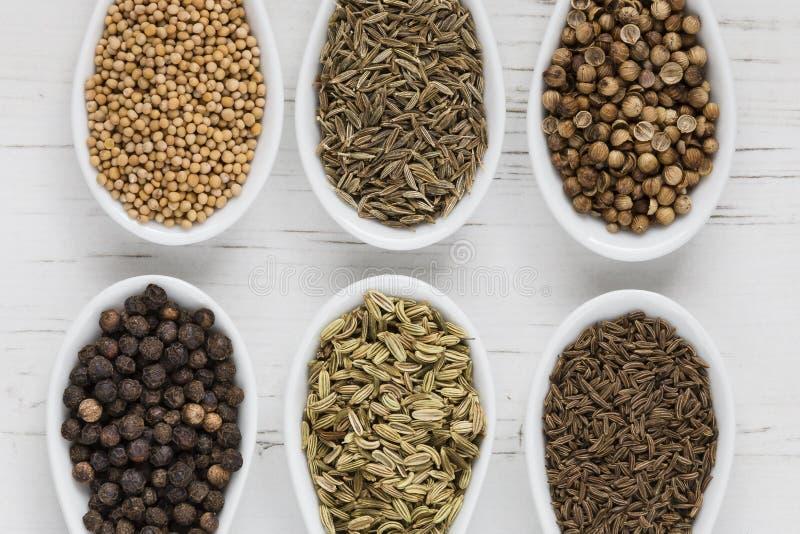 Helhetsfrö och kryddor royaltyfria foton