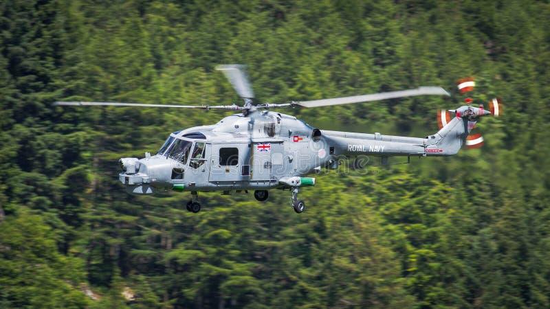 Helicóptero real do lince do exército fotos de stock