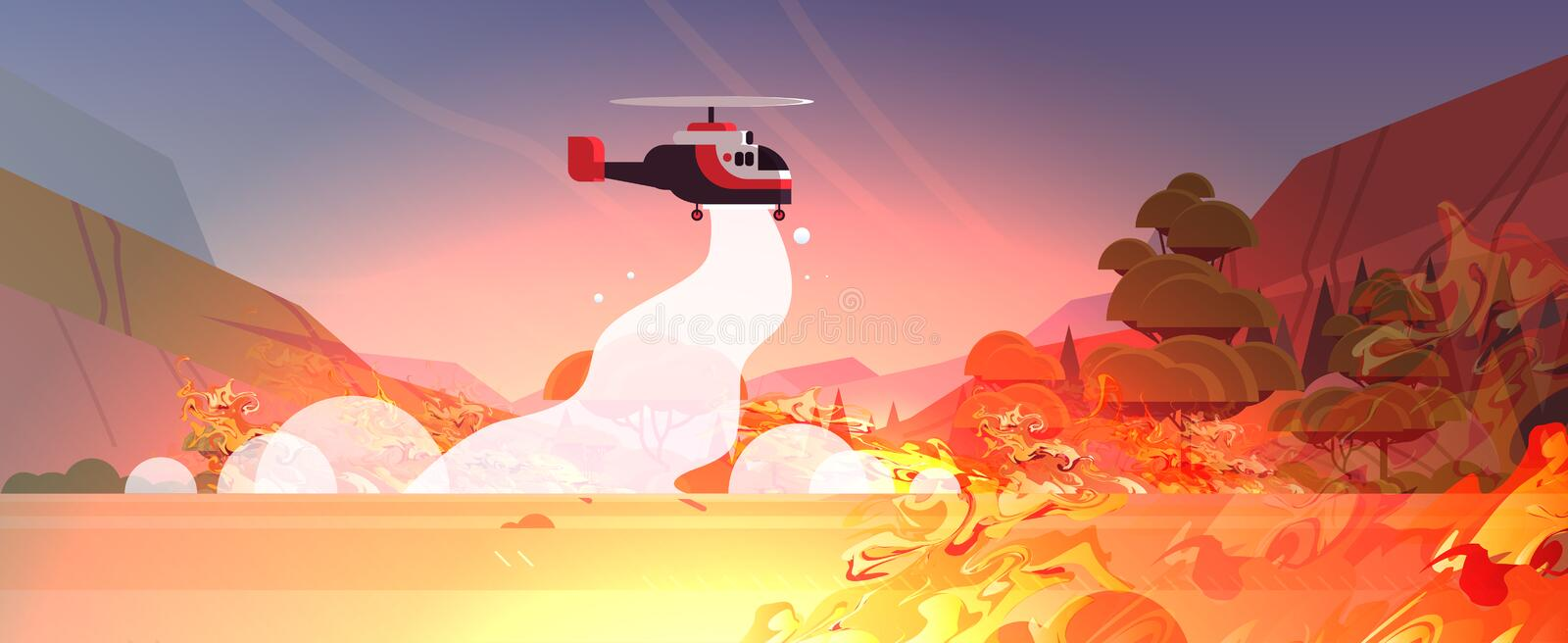 Helicopter extinguishes dangerous wildfire in australia fighting bush fire dry woods burning trees firefighting natural. Disaster concept intense orange flames vector illustration