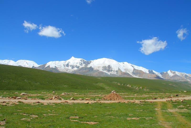Heligt snöberg Anymachen på den tibetana platån, Qinghai, Kina fotografering för bildbyråer
