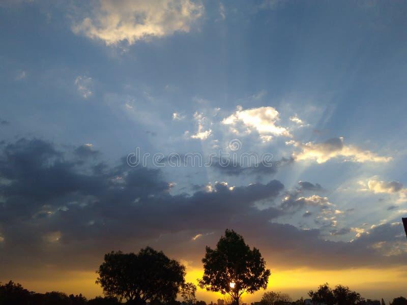 HELIOS-` s Baum-Sonnenunterganglandschaft lizenzfreies stockbild