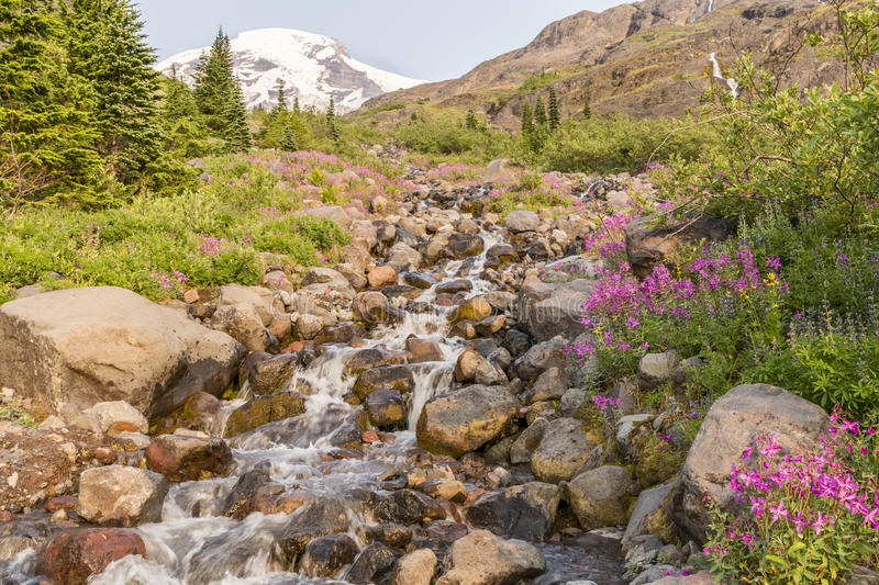 Heliptrope Creek and Mt. Baker royalty free stock images
