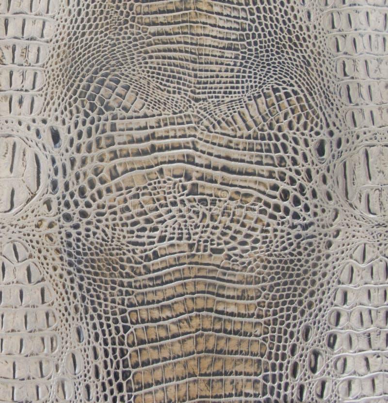 Hellbraune Alligatorbauch-Beschaffenheit stockfoto