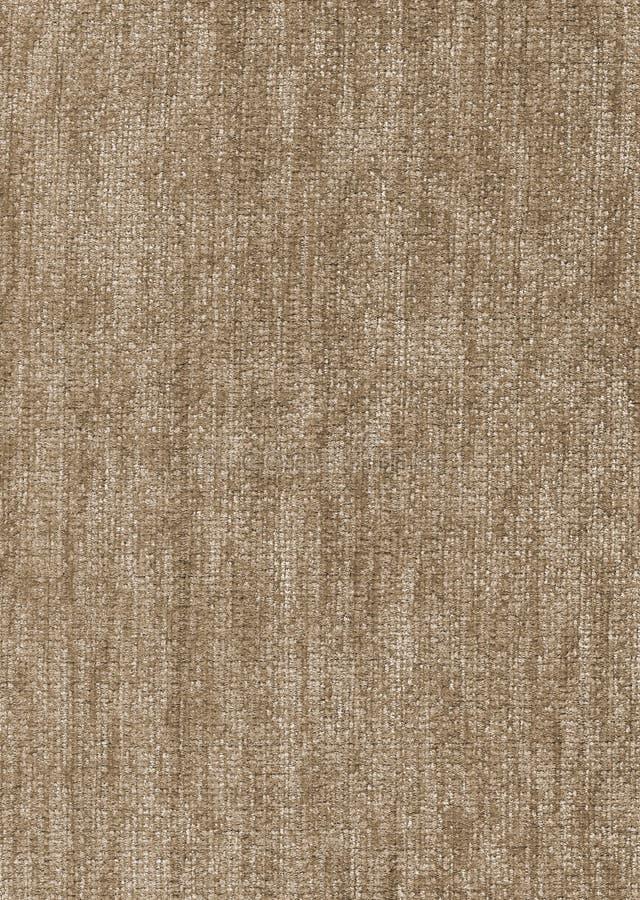 Hellbraune Velourslederbeschaffenheit stock abbildung