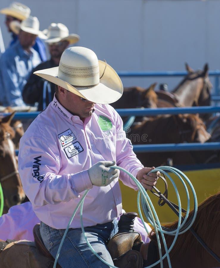 Download Helldorado days rodeo editorial photography. Image of ranch - 33467617
