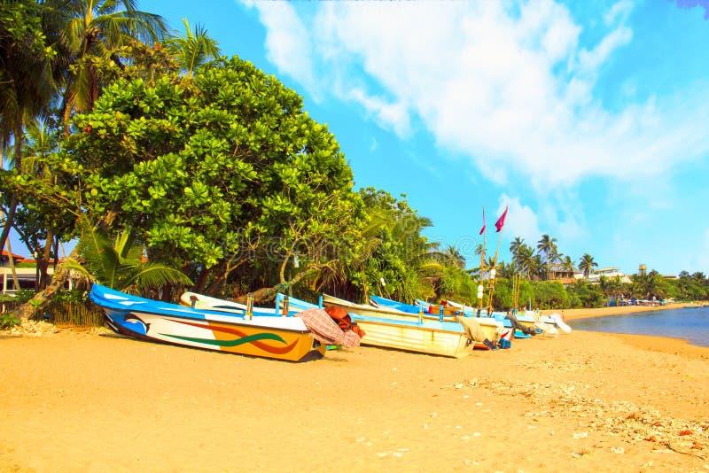 Helle Boote auf dem tropischen Strand von Bentota, Sri Lanka stockfotos