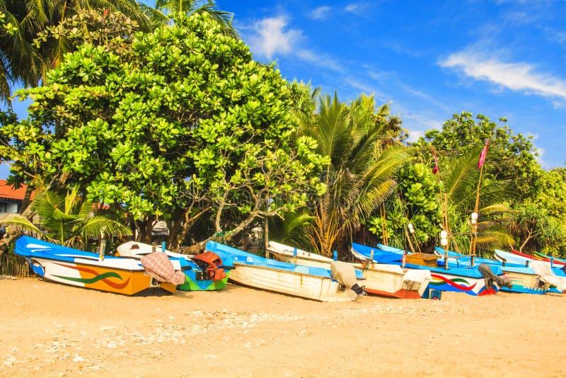 Helle Boote auf dem tropischen Strand von Bentota, Sri Lanka stockbilder