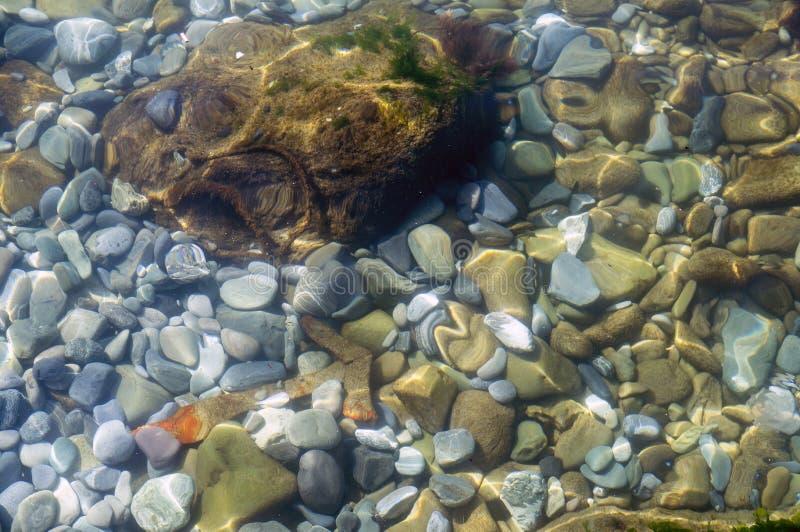 Helle bunte Felsen unter Wasser lizenzfreies stockfoto