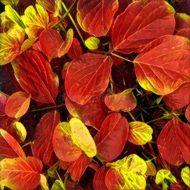 Helle gelbe, orange, rote, goldene Farben der Ahornblätter auf Baumzweig, backlit durch die Sonne Quadratische digitale Illustrat lizenzfreie abbildung