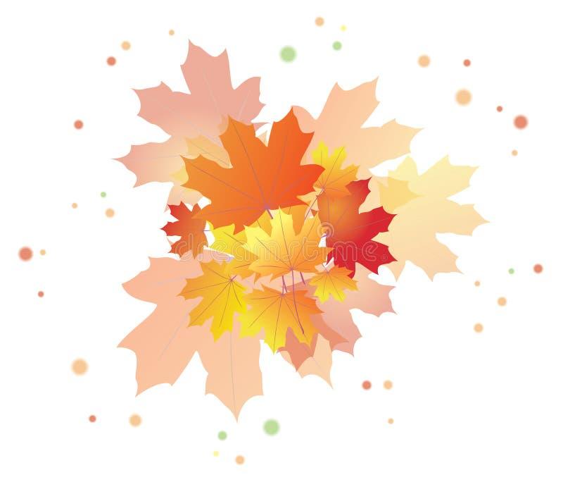 Helle Herbstblätter - ENV 10 vektor abbildung