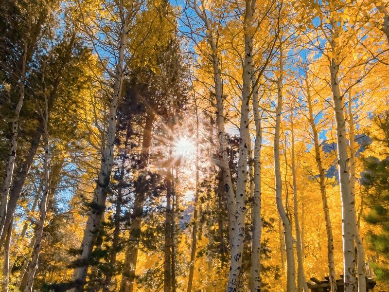 Helle Herbstlandschaft mit Sonnendurchbruch in der Mitte stockfoto