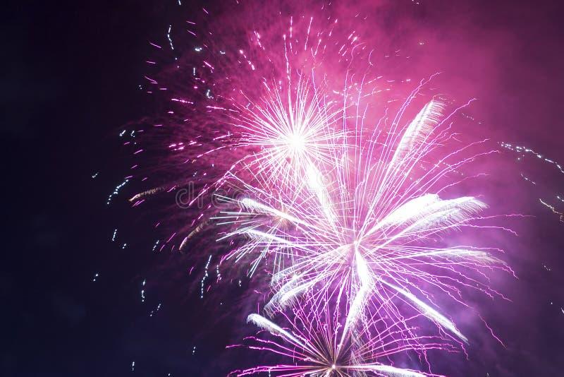 Helle purpurrote und rote Feuerwerke gegen den Himmel der dunklen Nacht stockfotografie