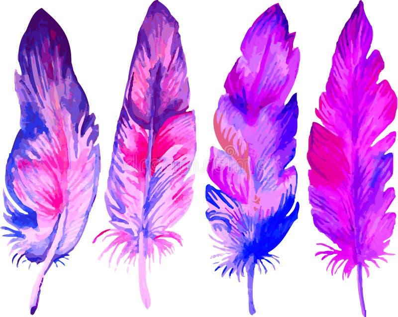 Helle schöne mehrfarbige Federn auf weißem Hintergrund lizenzfreie abbildung