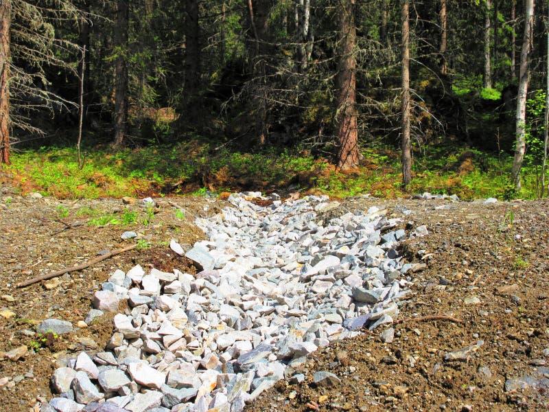 Helle Steine, das die Landschaft belichtet lizenzfreies stockbild