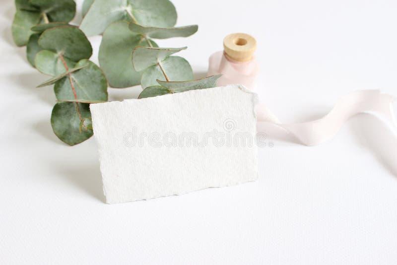 Helle weibliche Frühlingsbriefpapier-Modellszene mit einer Büttenpapiergrußkarte, Spule des Seidenbands und Eukalyptus stockfoto
