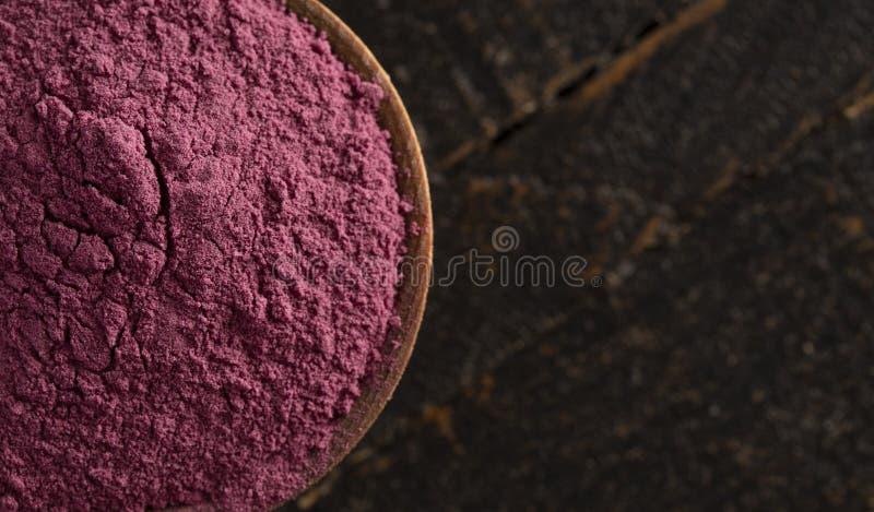 Heller farbiger Acai Berry Powder Perfect für das Hinzufügen Rezepten lizenzfreies stockfoto