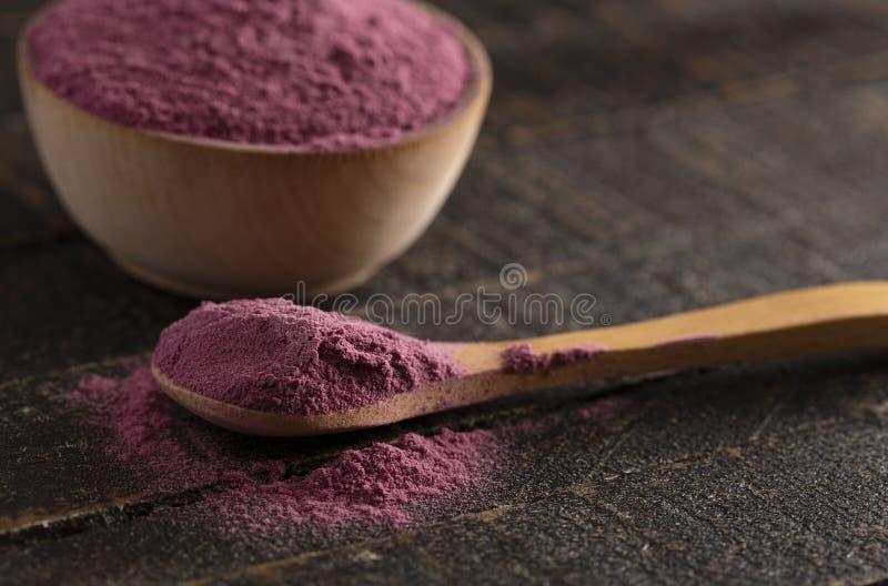 Heller farbiger Acai Berry Powder Perfect für das Hinzufügen Rezepten lizenzfreie stockfotos