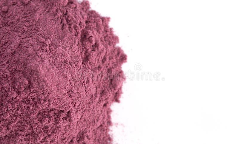 Heller farbiger Acai Berry Powder Perfect für das Hinzufügen Rezepten lizenzfreie stockbilder