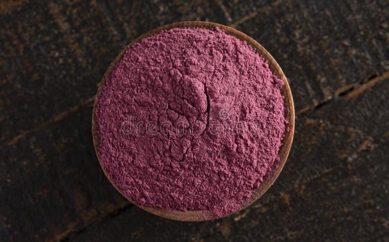 Heller farbiger Acai Berry Powder Perfect für das Hinzufügen Rezepten stockfotografie