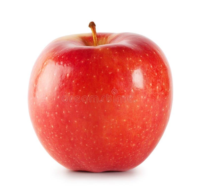 Heller glänzender roter Apfel stockbild