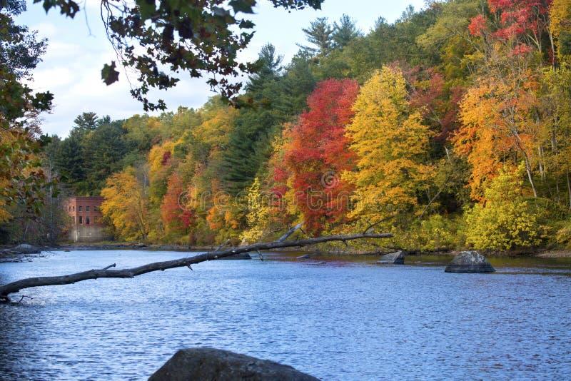 Heller Herbstlaub und alte Mühle auf dem Farmington-Fluss, Connec stockbild