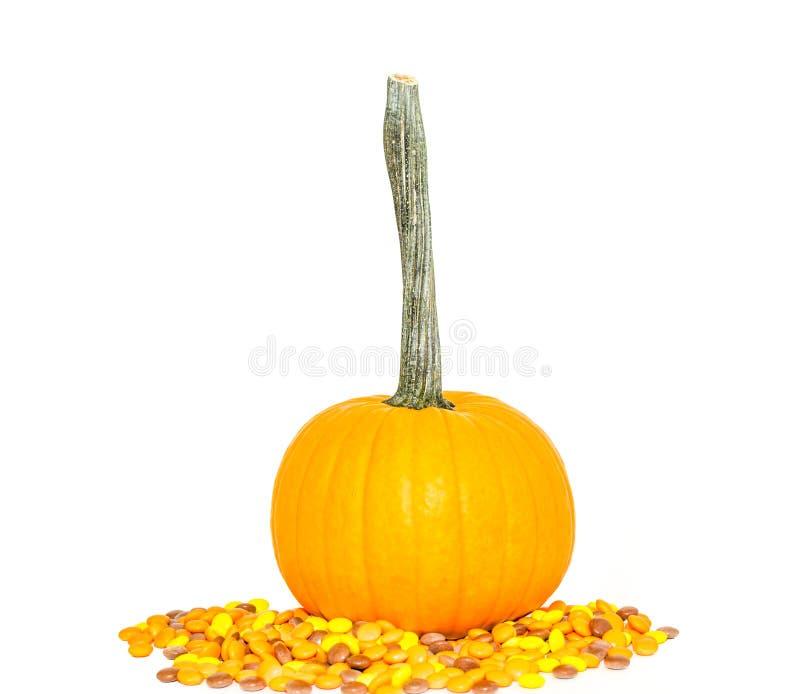 Heller Kürbis mit den Süßigkeiten lokalisiert auf weißem Hintergrund lizenzfreies stockbild