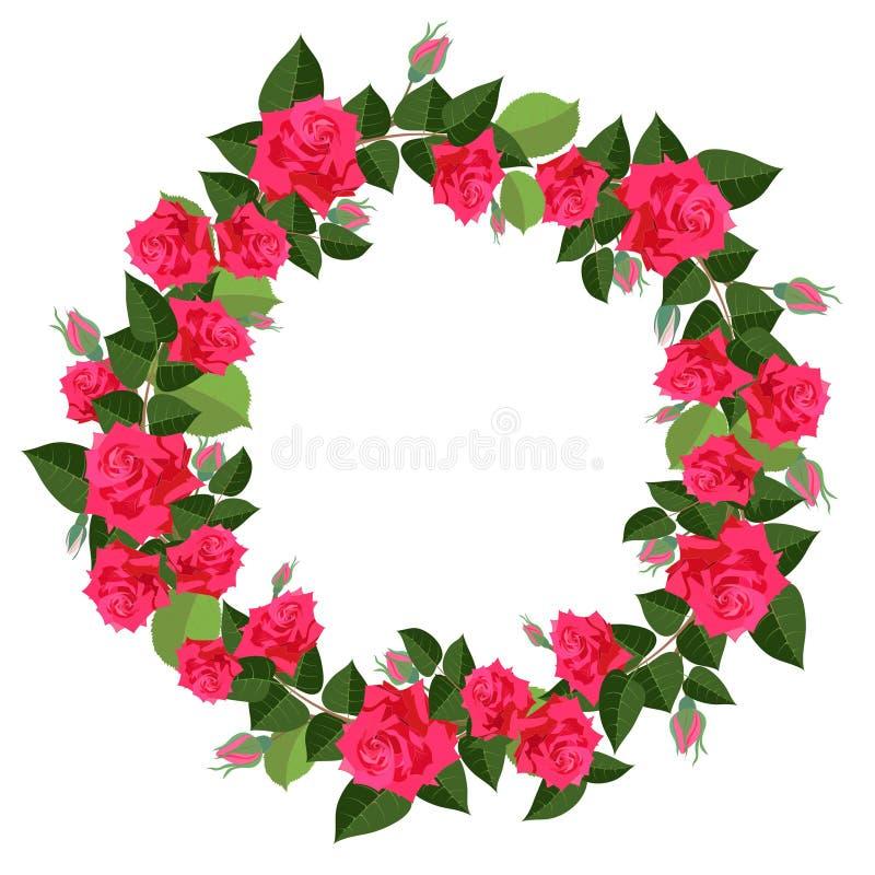 Heller Kranz von den roten Rosen lokalisiert auf weißem Hintergrund lizenzfreie abbildung