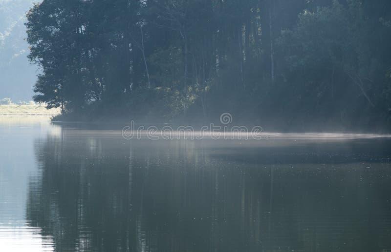 Heller Nebel schwimmt, die Wasseroberfläche zu bilden lizenzfreies stockfoto