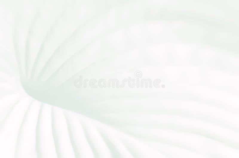 Heller Pastell farbiger Hintergrund mit Betriebsstruktur lizenzfreie stockbilder