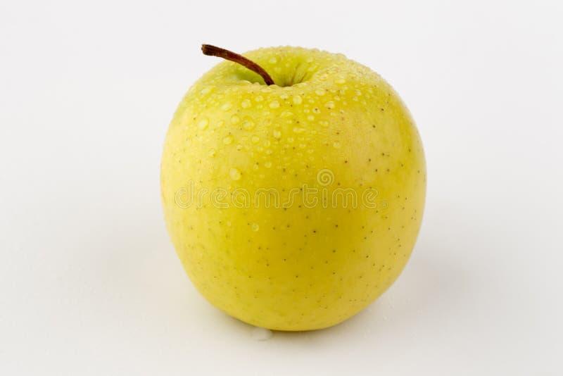 Heller reifer gelber Apfel in den Wassertropfen stockfoto