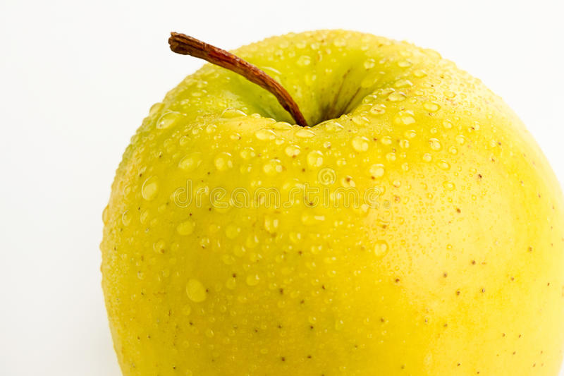 Heller reifer gelber Apfel in den Wassertropfen stockbilder