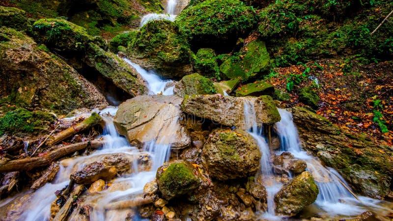Heller saftiger Wasserfall im Herbstwald lizenzfreie stockbilder