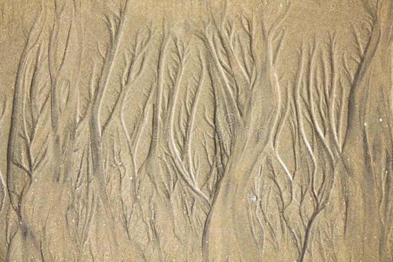 Heller Sand mit Strömen der Bettnahaufnahme natürliche Oberflächenbeschaffenheit lizenzfreie stockfotografie