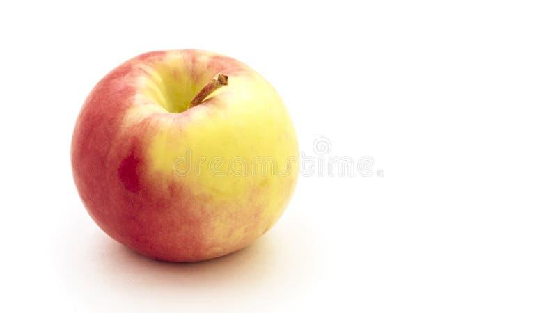 Heller und geschmackvoller roter gelber Apfel lokalisiert auf einem weißen Hintergrund lizenzfreie stockfotografie