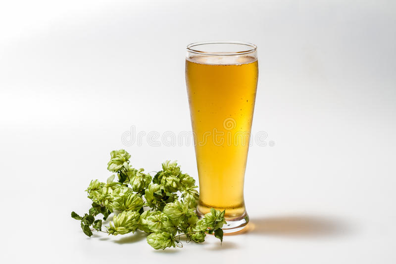 Helles Bier lokalisiert lizenzfreie stockfotos