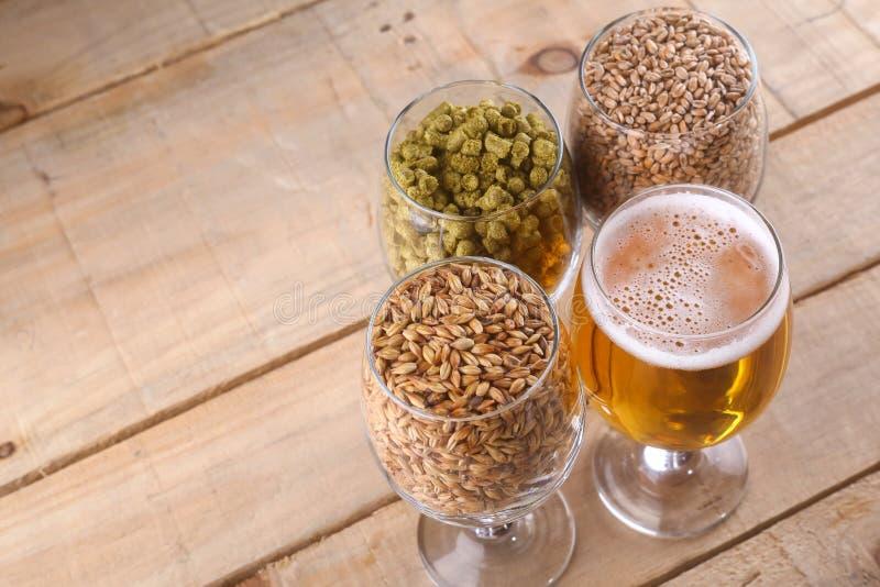 Helles Bier und Bestandteile stockbild