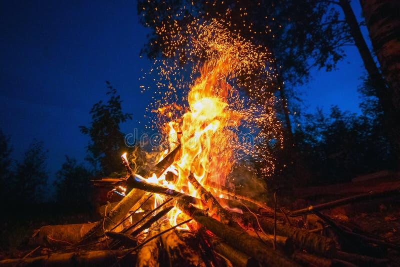 Helles Feuer auf einer dunklen Nacht in einer Waldlichtung lizenzfreies stockfoto