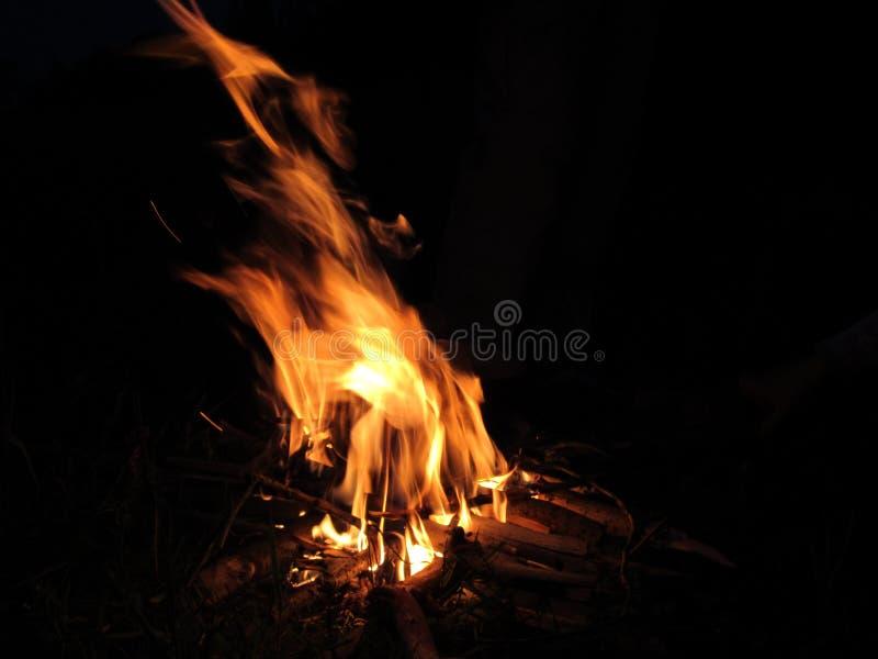 Helles Lagerfeuer in einer Sommernacht stockfotografie