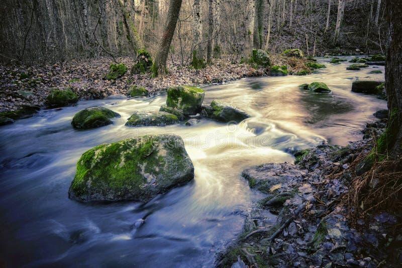 helles Reflektieren vom Wasser stockfotografie