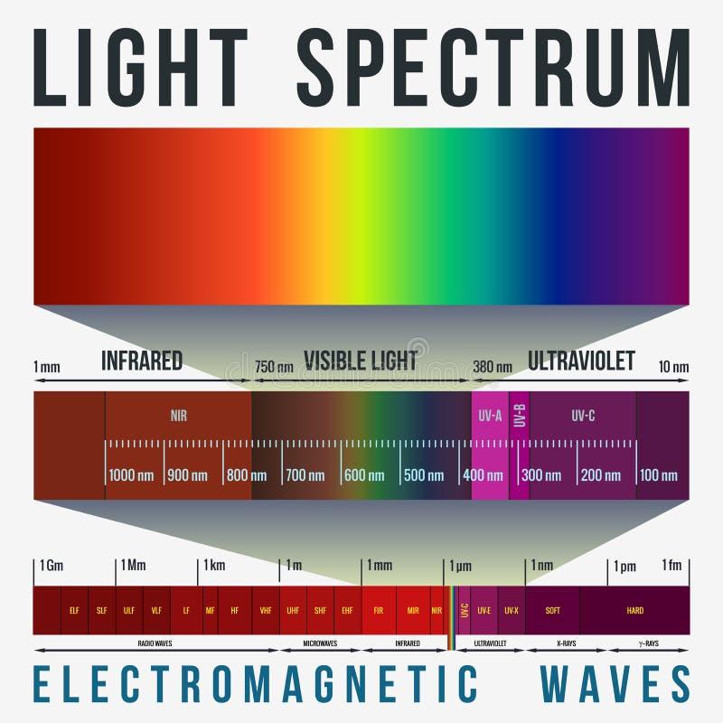 Helles Spektrum Infographic lizenzfreie abbildung