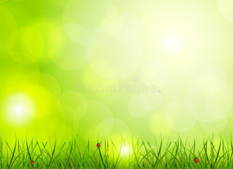 Hellgrüner Hintergrund vektor abbildung