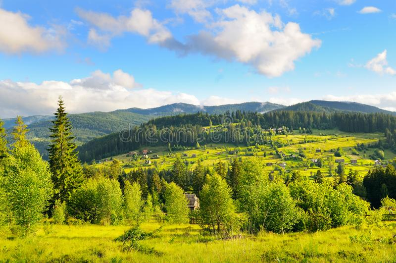 Hellingen van bergen, naaldbomen en wolken in de hemel royalty-vrije stock foto's