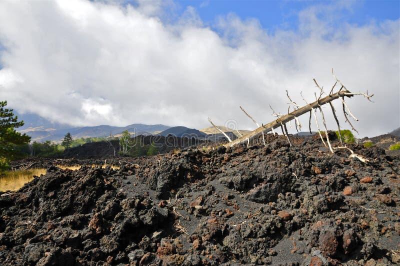 Hellingen van Onderstel Etna, Sicilië royalty-vrije stock foto
