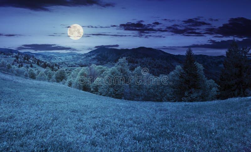Download Hellingsweide Dichtbij Bos In Berg Bij Nacht Stock Afbeelding - Afbeelding bestaande uit collage, planeet: 54084243