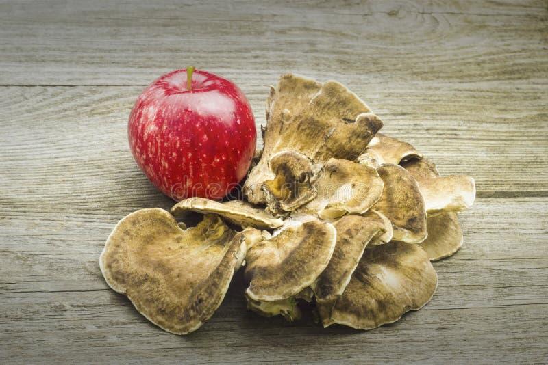 Hello autumn apple mushroom card foto. Apple mushroom Autumn,backgroundcard,design isolated wood,wood background, foto royalty free illustration