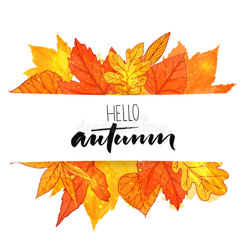 Hello autumn banner with orange and red hand drawn leaves. Vector calligraphy design. Fall background with golden leaf. stock illustration