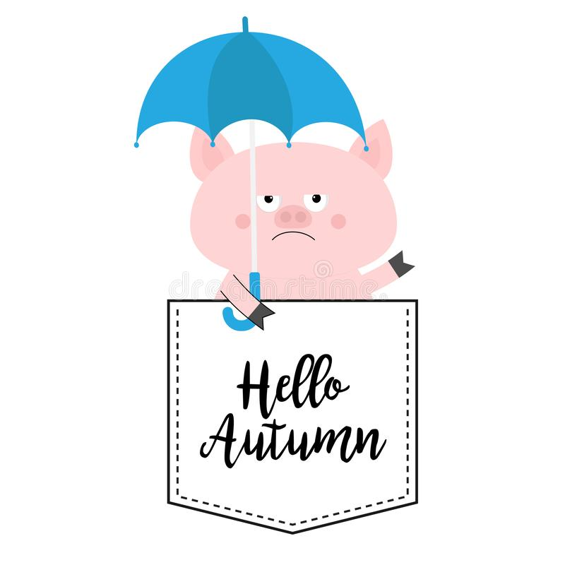 Hello autumn. Pig face head in the pocket. Umbrella. Cute cartoon animals. Piggy piglet character. Dash line. White and black. Color. T-shirt design. Baby royalty free illustration