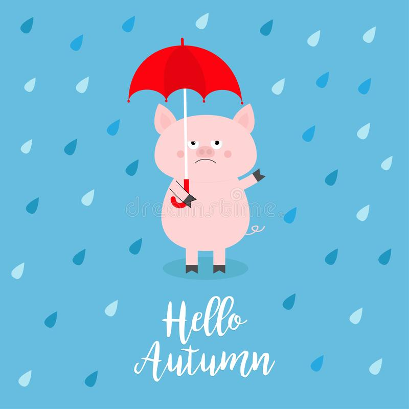 Hello autumn. Pig holding red umbrella. Rain drops, puddle. Angry sad emotion. Hate fall. Cute funny cartoon baby character. Pet a vector illustration